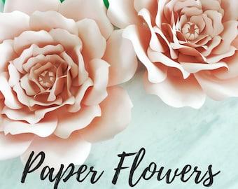 Paper flower template   flower template   paper flower backdrop   flower backdrop   giant paper flower   large paper flowers   paper flower