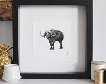 Framed Buffalo Print