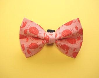 Crab Dog Bow Tie