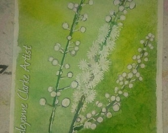 Black Cohosh ( aceo/atc size -2.5 x 3.5 inches)