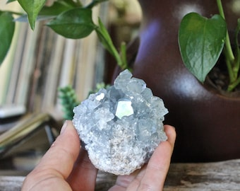 STUNNING Blue Celestite Specimen, Wiccan Altar Supply, Blue Celestite Geode, Blue Crystal Cluster, Large Crystal Specimen, Wicca Supplies