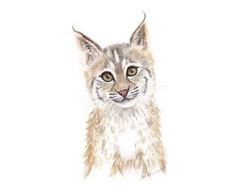 Wildcat Artwork, Baby Bobcat, Big Cat Art Print, Woodland Animal Art, Cat Artwork, Wildlife Print, Animal Portrait, Ohio, Texas, Arizona, UK