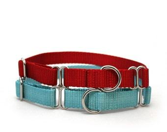 "3/4"" The Swan nylon martingale dog collar"