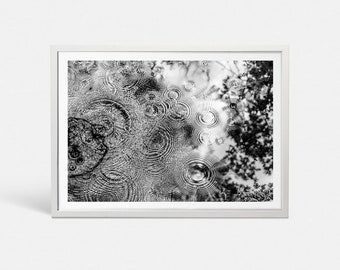 Nature prints Large art print Nature wall art Large poster Black and white art print Nature art Large wall art Rain drop print Puddle prints