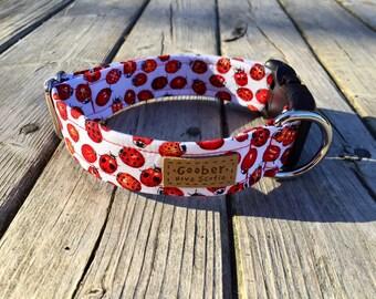 Ladybug Dog Collar, Red, White, Summer, Cute, Polka Dot, Beetle, Bug, Insect