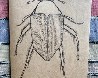 Handmade Insect Greeting Cards, Beetle , The Vagrant Spider