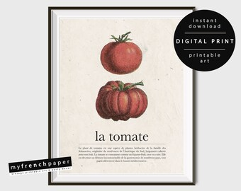 French Kitchen Wall Art Tomato Poster, Vegetable Print Wall Art Kitchen Poster Printable, Vegetable Art Print Kitchen Printable Wall Art