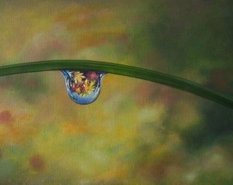 Daisy Dew Drop, fine art, giclee reproduction, flower painting, dew drop, nature, fauna