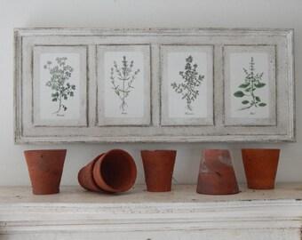 Antique Botanical Herb Prints on Wood vintage botanical print, botanical prints, farmhouse decor, garden print, herb prints