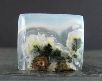 Excellent moss agate cabochon B7022