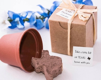 Texas Bluebonnet Flower Seed Garden Gift Set - Party Favors, Wedding Favors,  State of Texas Unique Gift Idea, Handmade in Dallas, Texas USA