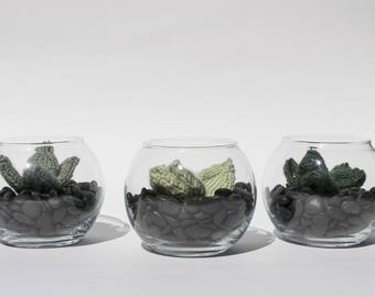 The bubble - Cactus plant in a small terrarium - knit, wool/hand, interior design, textile, green art, plant eternal