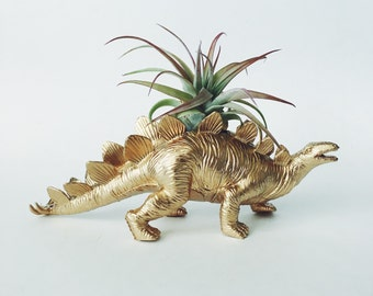 Large Gold Stegosaurus Dino Planter with Air Plant; Dinosaur Planter; Stegosaurus Dinosaur Planter; Air Plant; Tillandsia; Dino Planter