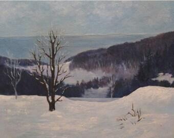 Hoffmaster State Park- Winter Landscape