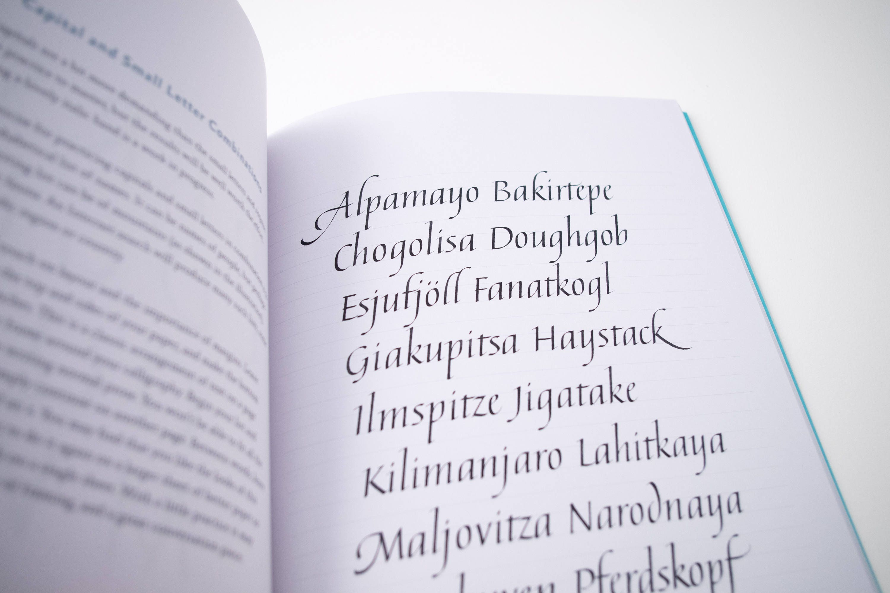 Simply calligraphy: a beginners guide to elegant lettering by judy