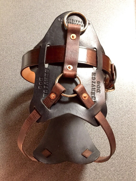Service Dog Brace Harness