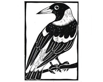 Linocut of an Australian Magpie in Traditional Black, Australian Bird Print, Printmaking, Lino Print