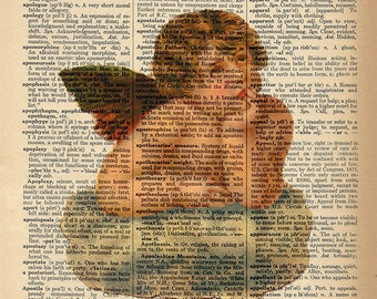 Dictionary Art Print - Angel Cherub - Upcycled Vintage Dictionary Page Poster Print - Size 8x10