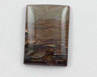 Picture Jasper Cabochon 25x35 Rectangle Deschutes Oregon Biggs Jasper L6 Vintage Hand Cut Agate