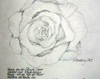 Rilke Rose