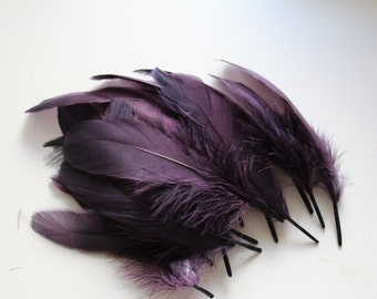 Aubergine Goose Nagoire Feathers, 10 Loose Feathers