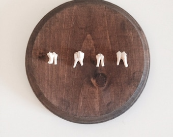 Teeth Mounted on Wood Plaque - Round