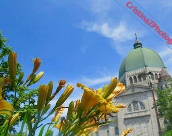 Flowers & Churches
