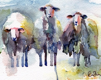 WE THREE SHEEP mounted watercolour print by Ruth Nolan