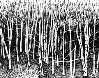 Birch Edge original woodcut print