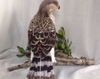 Needle Felted Juvenile Cooper's Hawk Ready to Ship