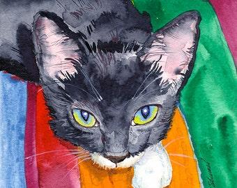 Squeak - The Wonder Cat - Giclee Print - Signed