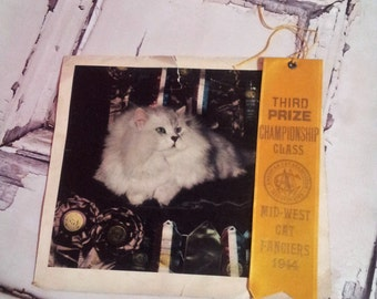 Reserved @ motse03 Vintage 1944 CFA CAT Show Yellow Satin Ribbon Award Championship Class Mid-West Cat Fanciers
