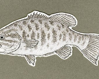 Smallmouth Bass sticker