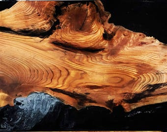 Hardwood cast in resin