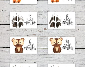 Printable Nursery Drawer Size Labels | Woodland Animals Drawer Labels | Woodland Animals Nursery Decor | Nursery Organizer | Baby Clothes