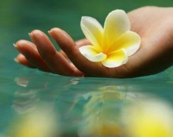 Organic Gardenia face cream Lotus facial mask Floral face care Vegan  moisturizer Noncomedogenic face moisturizer Oily skin facial care Face