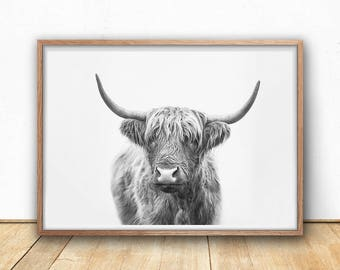 Highland Bull Digital Print, Farm Photography, Black And White, Highland Cow Art Print, Printable Animal Wall Art, Scottish Cow Poster