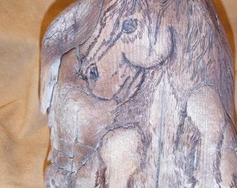 Woodburned wild horse on natural driftwood (pyrogrpahy art)