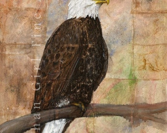 Bald Eagle Painting, Bald Eagle Art, Bird Painting, Bird Art Print, Wildlife Painting,Bird Illustration Bird Wall Art Animal Art Print,
