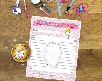 Baby Teething Identification Chart, Printable Teething Chart, Tooth fairy, tooth records, tooth tracker for baby girl, Instant download