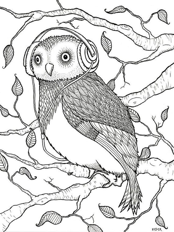 A wing and a flair adult coloring book birds with accessories peacock pigeon flamingo chickadee owl