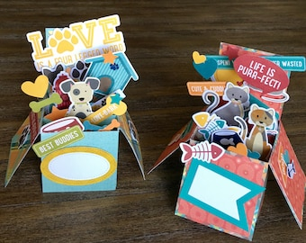 Dog or Cat Explosion  Box Card