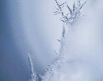 "Postcard fine art photography - ""The Ice Citadel"""