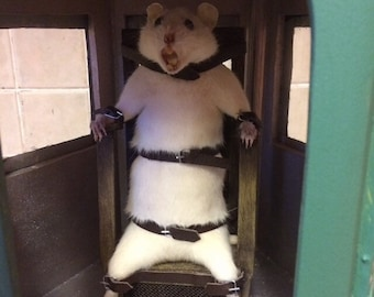 Taxidermy rat in gas chambers free worldwide shipping horror