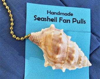 Seashell Light / Ceiling Fan Pull