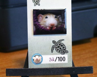 Marty Mouse in his Sock - ENAMEL PIN with backing board