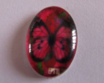 butterfly cabochon, glass cabochon, oval cabochon, 25mmx18mm, various models