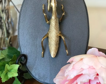 Praying Mantis Home Decor, Gold Faux Insect Taxidermy, Praying Mantis Plaque, Home Decor, Wall Art