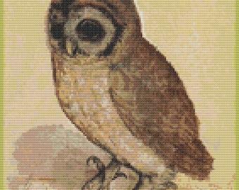 Owl Cross Stitch Chart, The Brown Owl Cross Stitch Pattern PDF, Art Cross Stitch, Albrecht Durer, Embroidery Chart