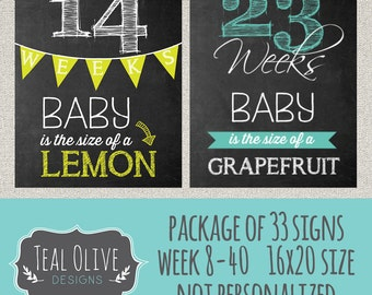 Weekly Pregnancy Chalkboard Sign - Week 8-40 Package Deal 33 Signs - Weekly Pregnancy Countdown - Baby Size Only - 16X20 - INSTANT DOWNLOAD